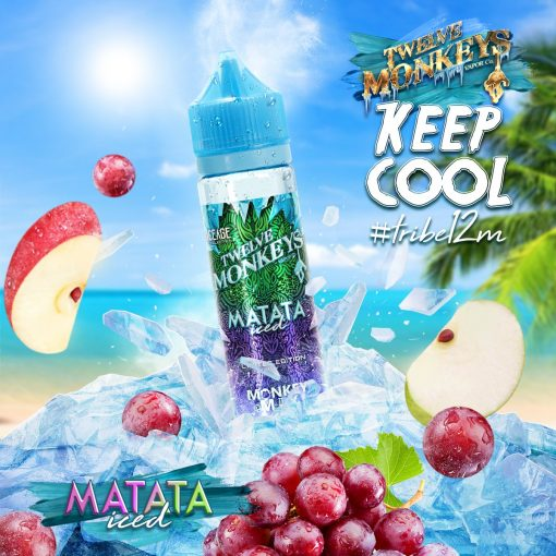 Matata Ice Age Mix by Twelve Monkeys Vapor