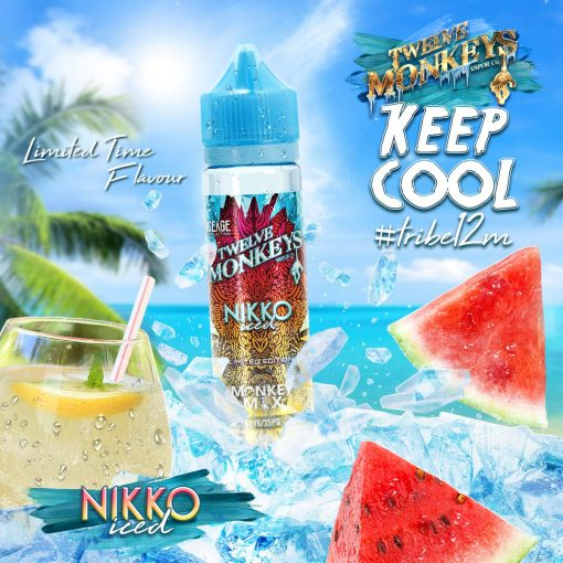 Nikko Ice Age Mix by Twelve Monkeys Vapor